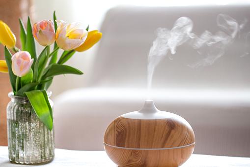 nawilżacz powietrza do mieszkania