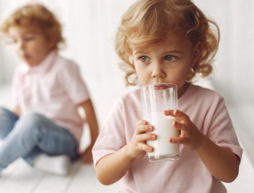 mleko modyfikowane dla ptrzedszkolaka